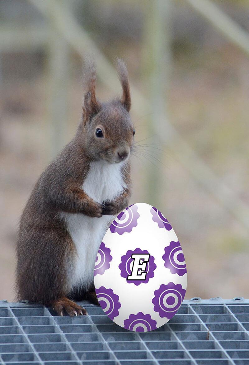 Hans-Hermann, das Eichhörnchen mit Osterei