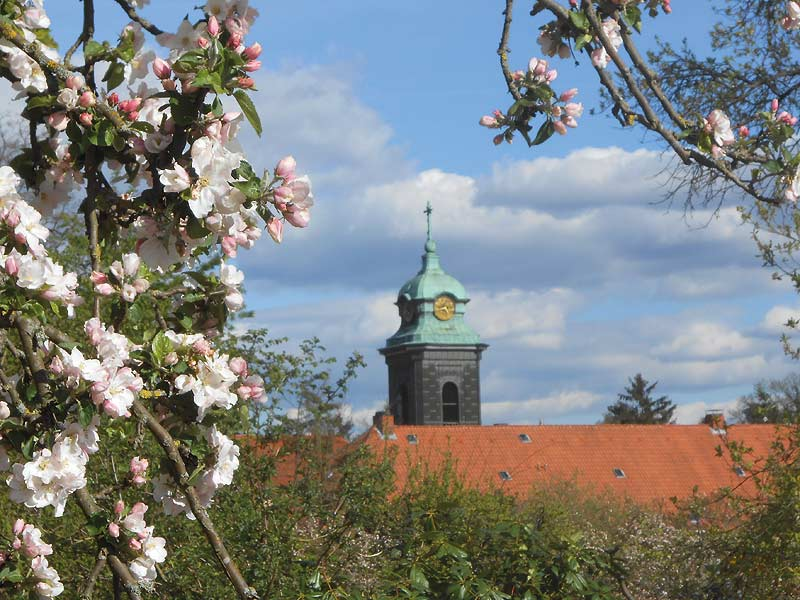 Kloster Medingen in Bad Bevensen