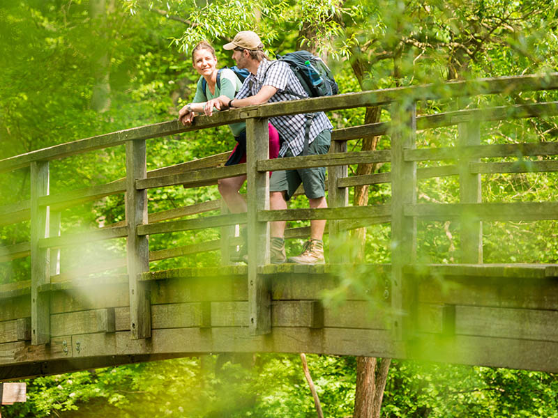 Wanderer blicken von einer Brücke auf die Ilmenau