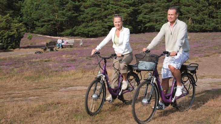 Radfahrer in der Klein-Bünstorfer Heide