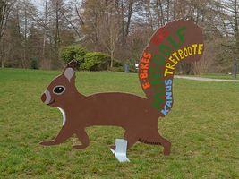 Hans-Hermann-Kunstaktion: das Eichhörnchen als Minigolf-Eichhörnchen