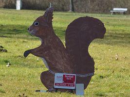 Hans-Hermann-Kunstaktion: das Eichhörnchen als Hinweis auf die Notfallbank