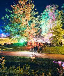Beleuchtete Bäume zur Kurparknacht