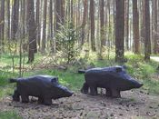 Wildschweine aus Holz am Rollstuhlwanderweg