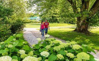Spaziergänger im Kurpark Bad Bevensen