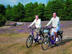 Radfahren in der Heide