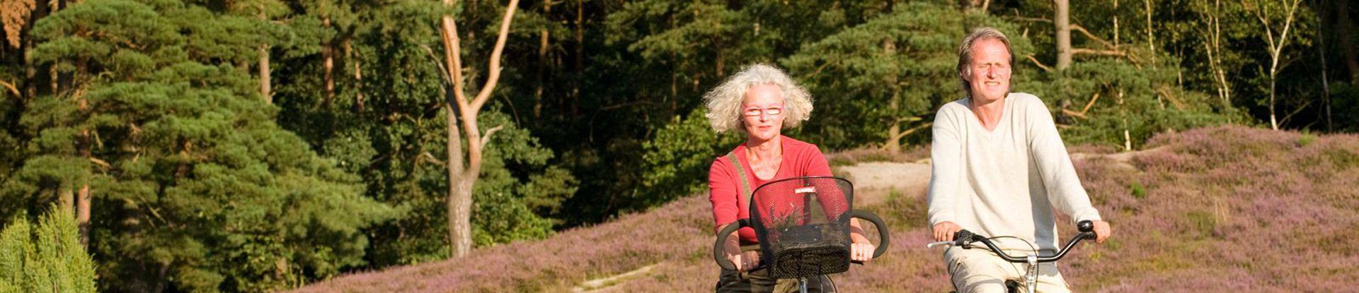 Radfahrer in der Klein Bünstorfer Heide