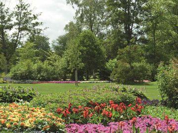 Bunte Blumen im Kurpark