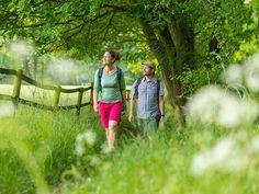 Wanderer blicken ins Grüne