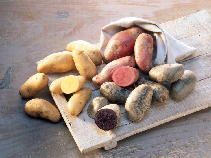 Heidekartoffeln in verschiedenen Sorten