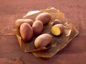Kartoffel des Monats: Laura