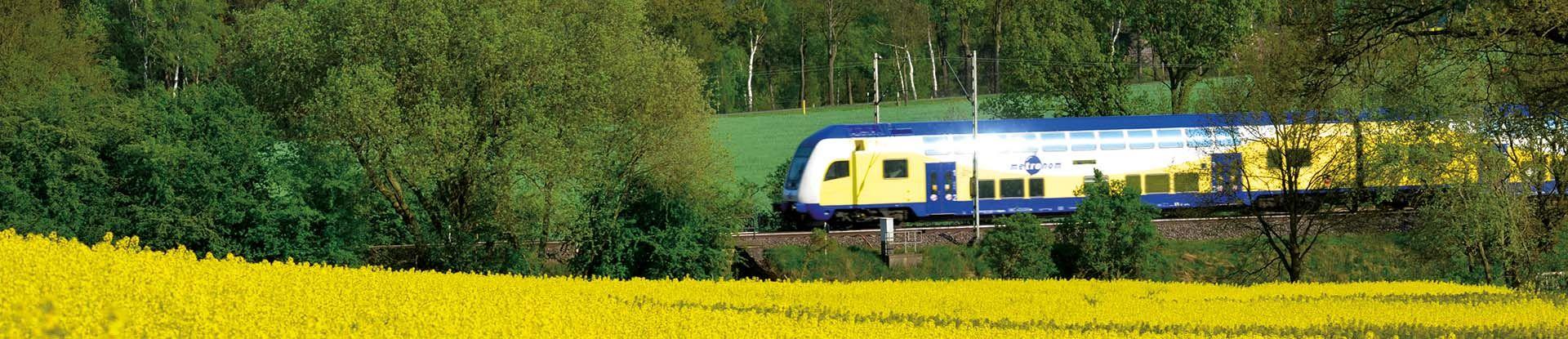 Anreise nach Bad Bevensen: Metronom