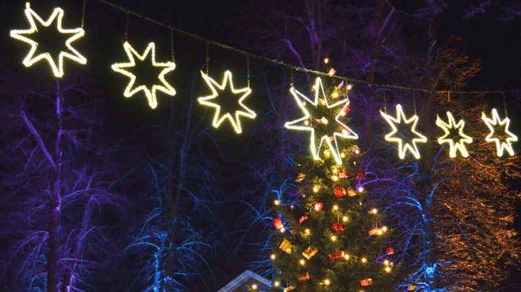 Weihnachtsbaum Bad Bevensen