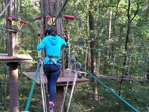 TreeTrek Waldkletterpfad