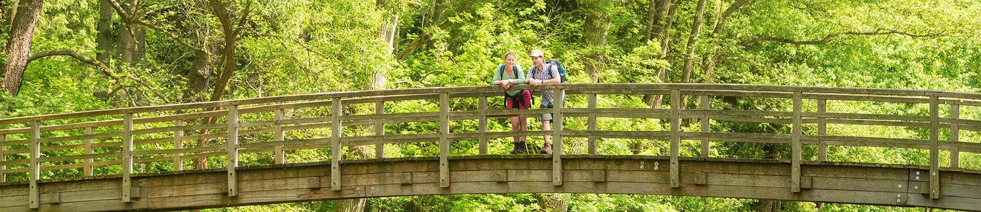 Wanderer auf einer Brücke