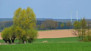 fields arround Bad Bevensen