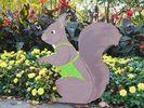 Das Eichhörnchen Hans-Hermann als Gärtner