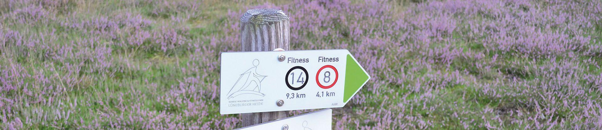 Wanderweg in der Klein Bünstorfer Heide