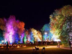Stimmungsvoll beleuchteter Kurpark zur Kurparknacht Bad Bevensen